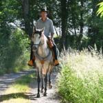 Gaspard koenig voyage de montaigne