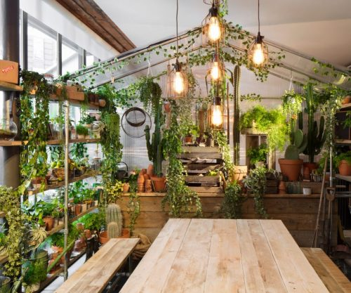 maison pantone greenery